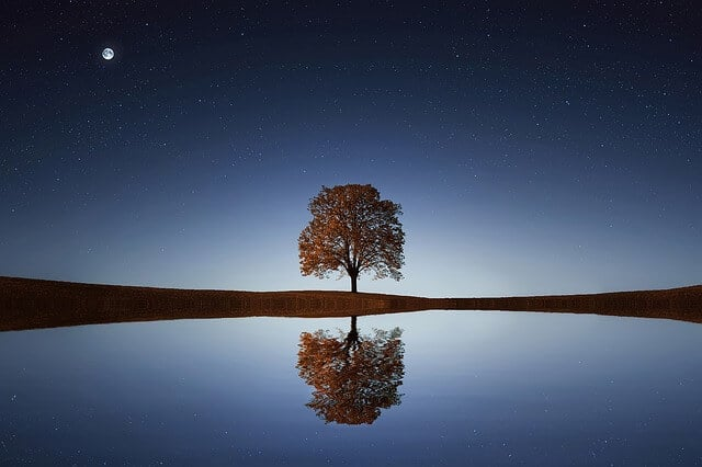 The Universal Law of Reflection
